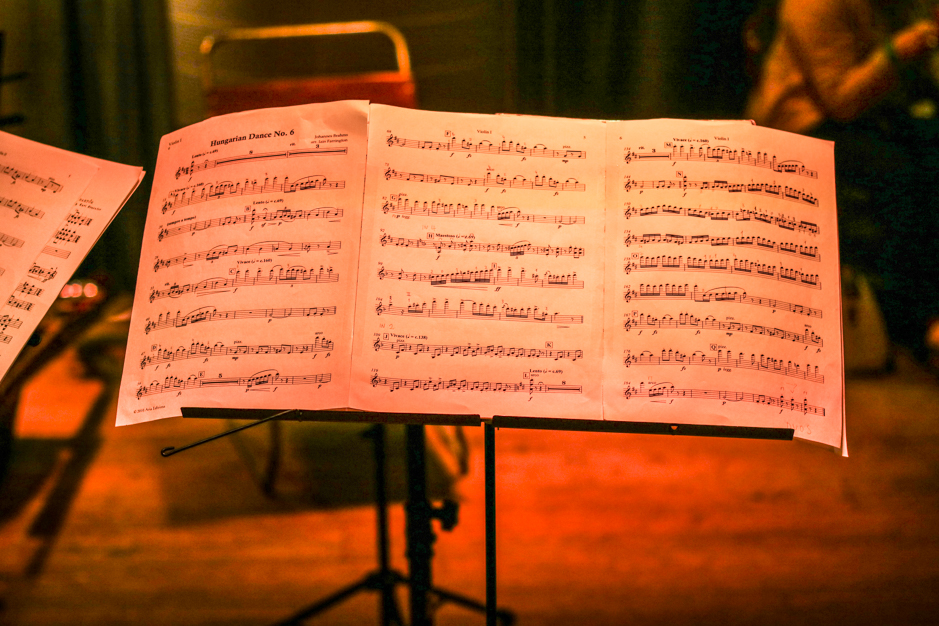 The Arensky Chamber Orchestra
