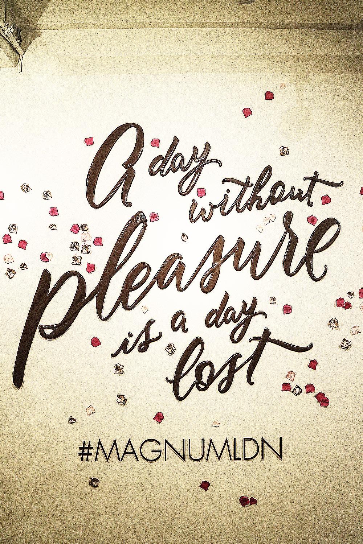 Magnum Pleasure Store London