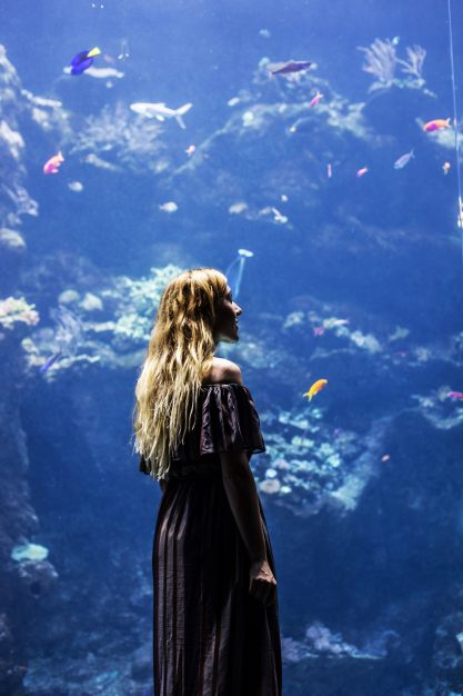 """California Academy of Sciences – Worth a Visit"""""""