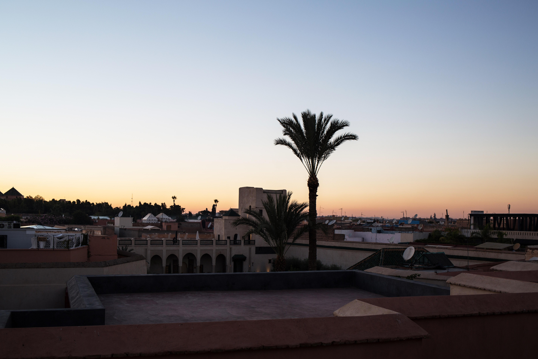 Le Jardin Secret and a sunset at Café Arabe Marrakech