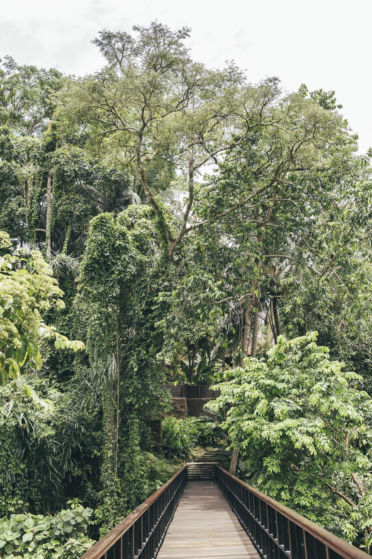 Kayumanis Ubud grounds
