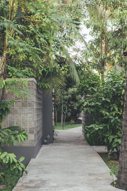 Siem Reap Hotels: templation garden