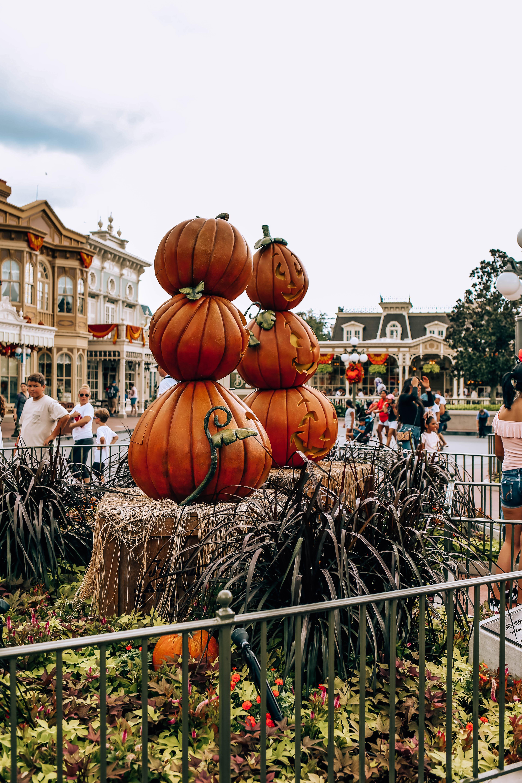 Disney World Florida Magic kingdom