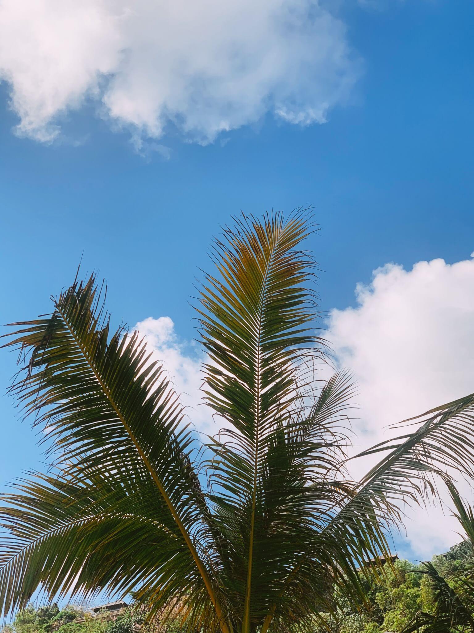 Palmilla Beach Club Bali